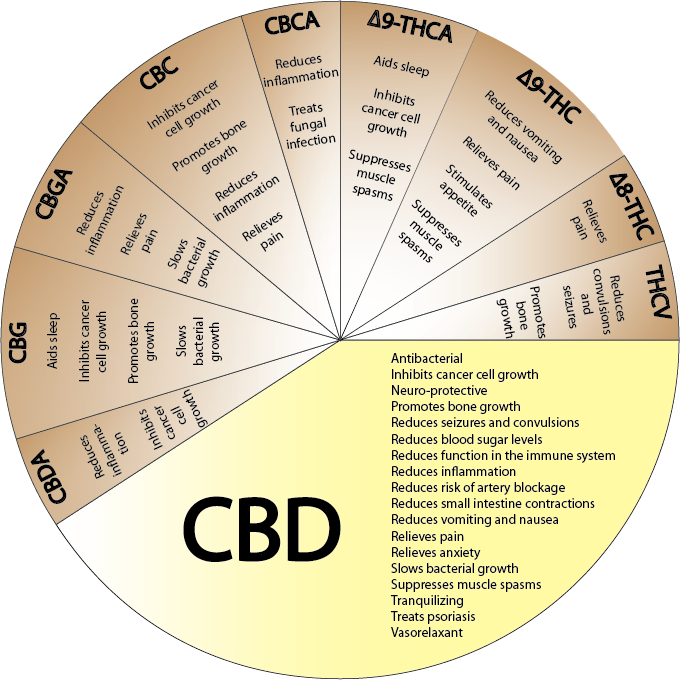 A very useful chart on the medical components in Cannabidoils. Chart Credits: Patients for Medical Cannabis