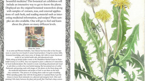 Medicinal Botanical Illustrations with Meditative Music-Saturday: 7PM-9PM