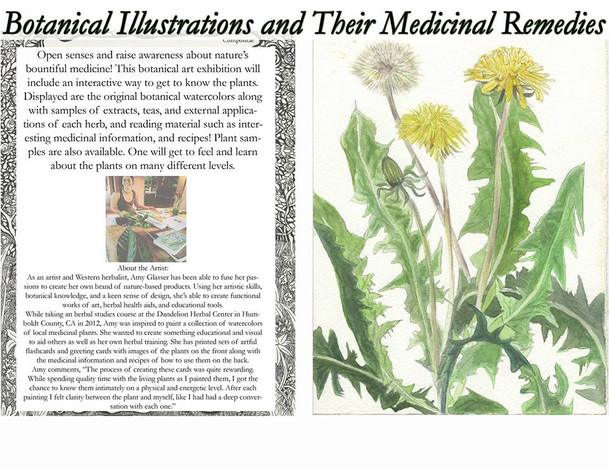 Medicinal Botanical Illustrations with Meditative Music-Saturday: 7PM-9PM