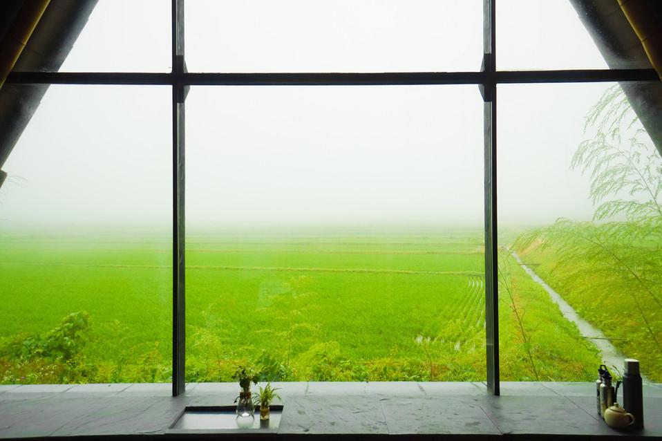 霧もまたよし