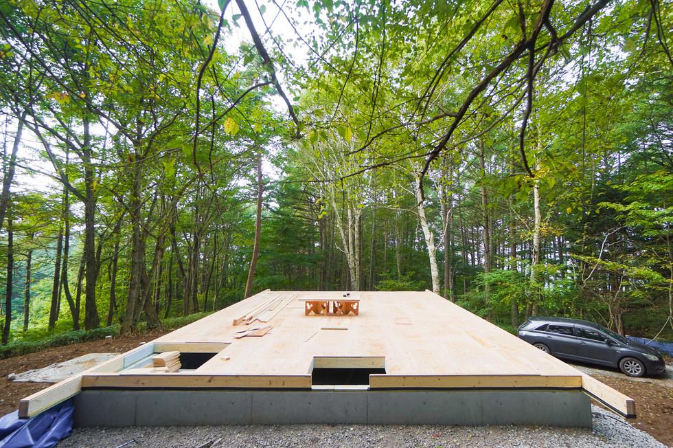 床組み完了、森の中の舞台のよう