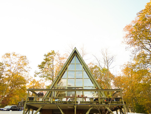 Bird's nest A-frame house