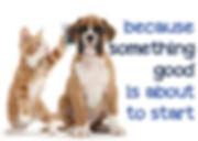dog-juan-coming-soon-13-638.jpg