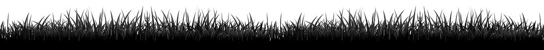 numa-website-grass.jpg