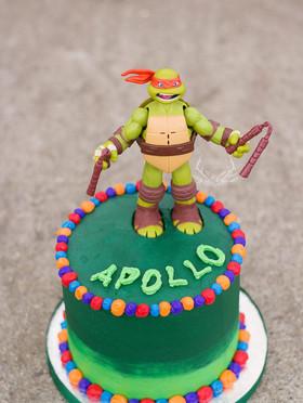 Ninja Turtle Smash Cake