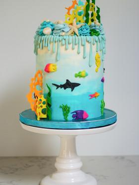 Watercolor Sealife Drip Cake
