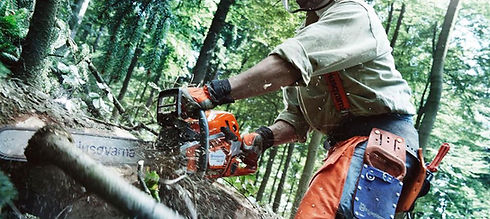 EGO Battery Chainsaw