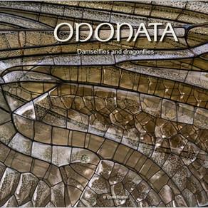 ODONATA (II)