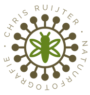 Logo CRN_1080.png