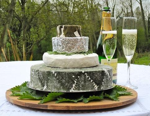 Celebratory Cheese Cakes
