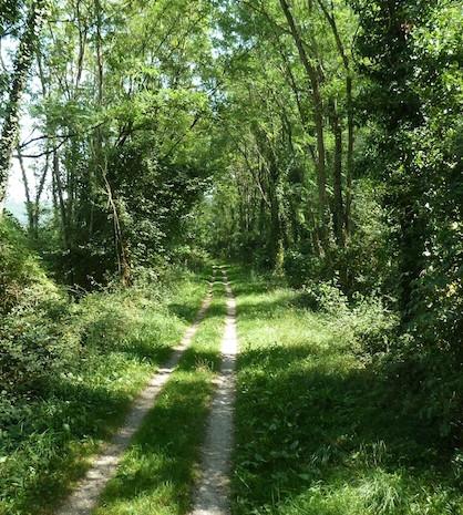 Chemin des Filatiers.jpg