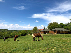 Lodges & Chevaux