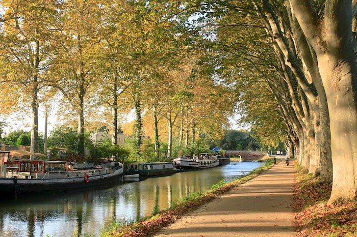 canal du midi Toulouse.jpg