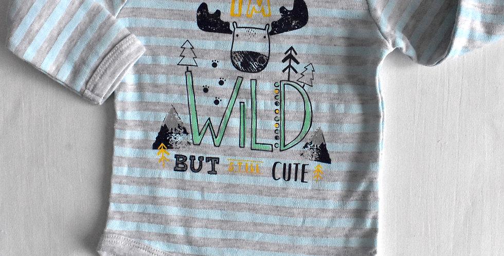Wild Body