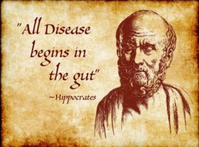 Gut health quote