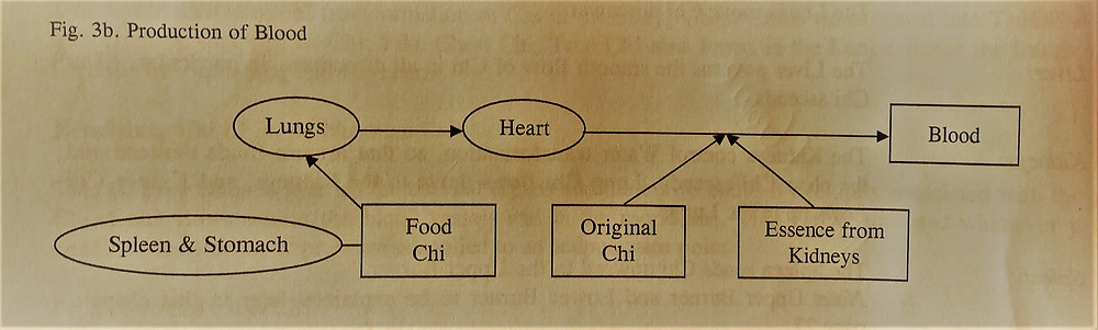 Flow chart of production of blood