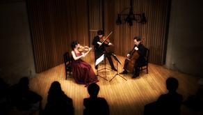 Ensemble Amoibe あもいべ!シリーズ / ストリング・トリオの収録&Live配信