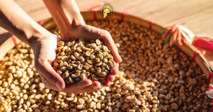 Coffee Beans Saigon
