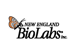 NE Bio Labs logo.png