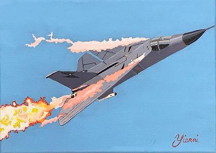 F111Fin.jpg