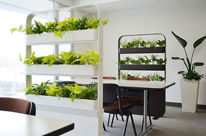 パーテションに植物を取り入れる事で、癒しの効果