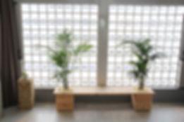 観葉植物管理、コズミベンチで鮮やかな空間