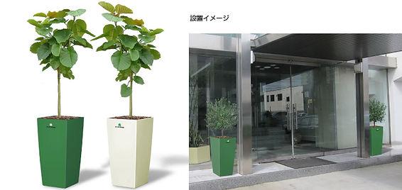 建物の外に設置された、植物、メンテナンス付き