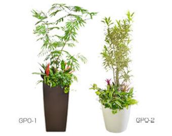 観葉植物レンタル、おしゃれな鉢カバーに花観葉や小さい観葉植物を合わせた、ボリュームある商品