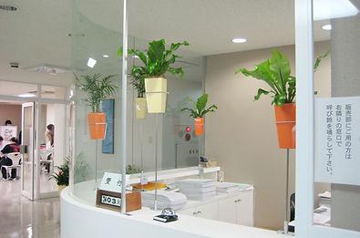 観葉植物リース、労働環境改善、労働環境向上に植物の癒しの力を