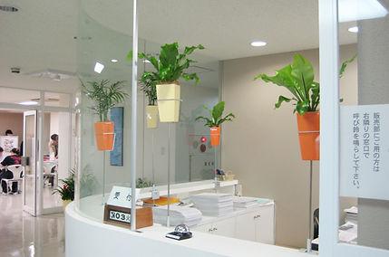 インパクトのある植物で好印象に、貸し木、本厚木駅