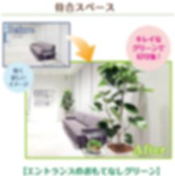 観葉植物tでオフィスの印象アップ