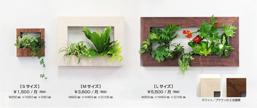 オリジナル商品フォレストフレームのサイズ別価格表記、藤沢
