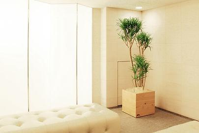 植栽を飾ることで、温かみのある空間へ 寒川
