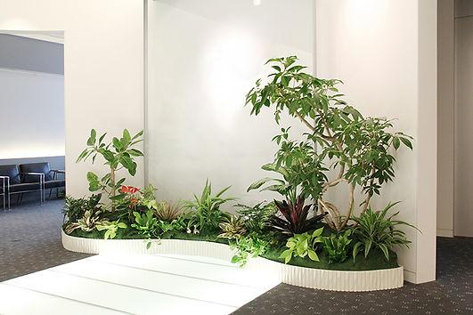 貸し木 貸し植木 オフィス 観葉植物レンタル 観葉植物リース