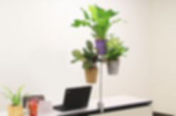 メンタルヘルスケア、植物、視覚疲労、労働環境改善、ストレスチェック対策に