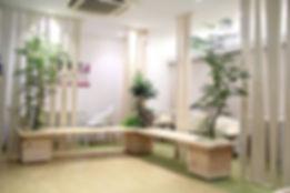 椅子植物、ベンチ植物、待合室植物、植物リース、海老名市
