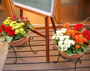 フラワーレンタル、お花レンタル、店舗の正面を華やかに彩ります
