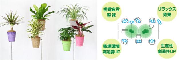 デスクに観葉植物、植物リース、ショップ観葉植物設置