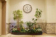 空いたスペースに貸し植木で鮮やかな空間に