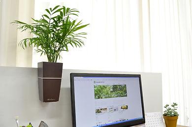観葉植物レンタル、労働環境向上、ストレス軽減、視覚疲労軽減