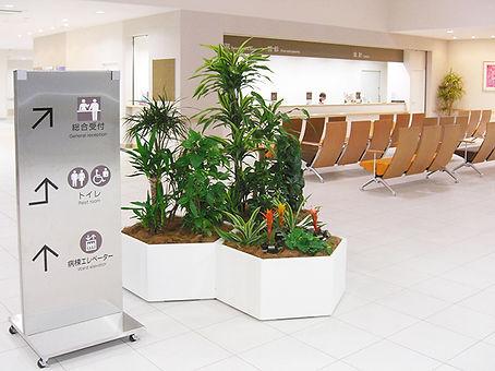 植物レンタル、受付植物レンタル