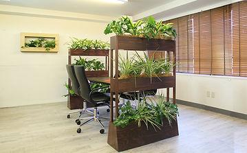 パーテション植物 観葉植物レンタル 観葉植物リースで室内緑化