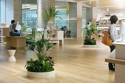 シンボルグリーン、植物リース、病院、観葉植物レンタル