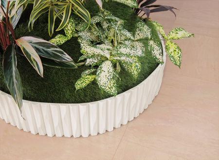 植物レンタル、オリジナル商品グリーバのエレガントウッドの細部写真、