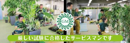 観葉植物の試験 厚木市 植物レンタル