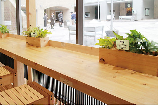 飲食店のカウンターに観葉植物で癒しを提供します。ポトス、ライムポトス