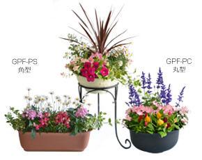 お花、レンタル、リース、季節のお花を楽しめる、フラワーレンタル