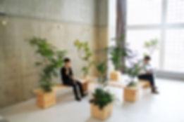 観葉植物レンタル、労働環境向上、ストレス軽減