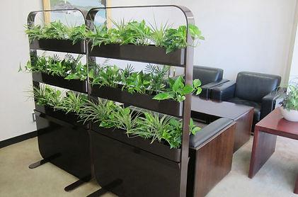 無機質になりがちなパーテションを植物で温かく、植栽れレンタル