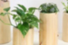 観葉植物リース、季節に合わせた空間をデザインします